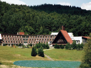 Hotel Všemina - hotely, pensiony | hportal.cz