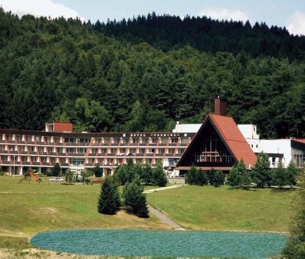 Hotel Všemina